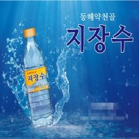 동해약천골 지장수 500mlx20병 PH8.2/생수/물/황토물
