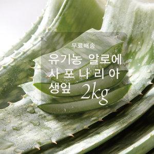 무료배송.유기농. 먹는 생알로에 사포나리아  2kg