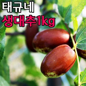 태규네농장 보은생대추 대추 왕대추 햇과일 사과대추