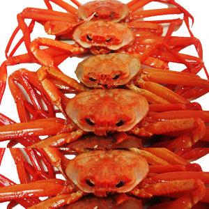 동해 홍게(활어/자숙가능) 3kg 당일조업 산지직송