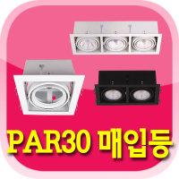 PAR30 매입등/다운라이트/투광기 1 2 3구