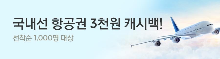 [항공] 국내선