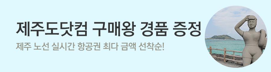 [항공] 국내선 경품